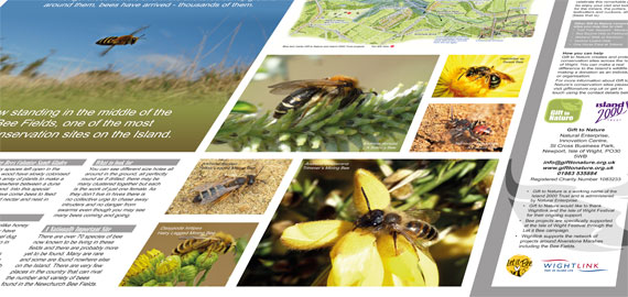 Bee Fields interpretation board