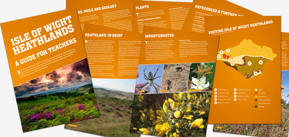 Heathland activity pack